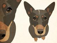 Illustration of Ari