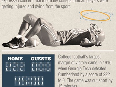Infographic Preview
