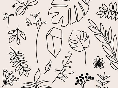 plant friends crystal flower background line art wallpaper flora plants illustration