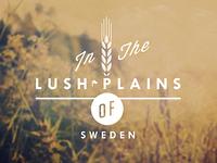 Lush Plains
