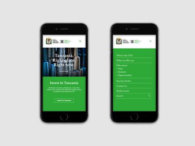 TDU Tanzania Web