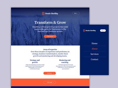 Denis Herlihy Website websites design ui web design website web