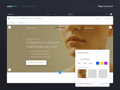 Web site builder. Page constructor
