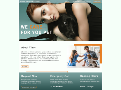 Web Design - Veterinary Clinic