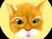 Jumbo the cat