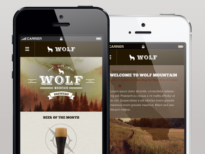Wolf Mountain Mobile