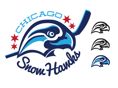 Chicago Snow Hawks Women's Hockey Logo