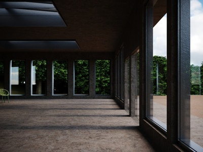 Raw Concrete; Daylight