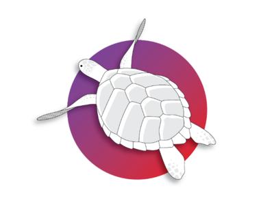 Turtle Minimal Artwork
