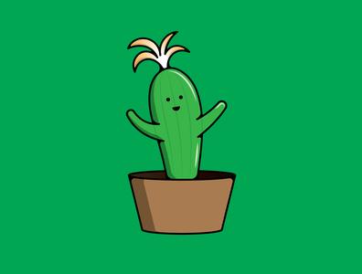 Cute Baby Cactus