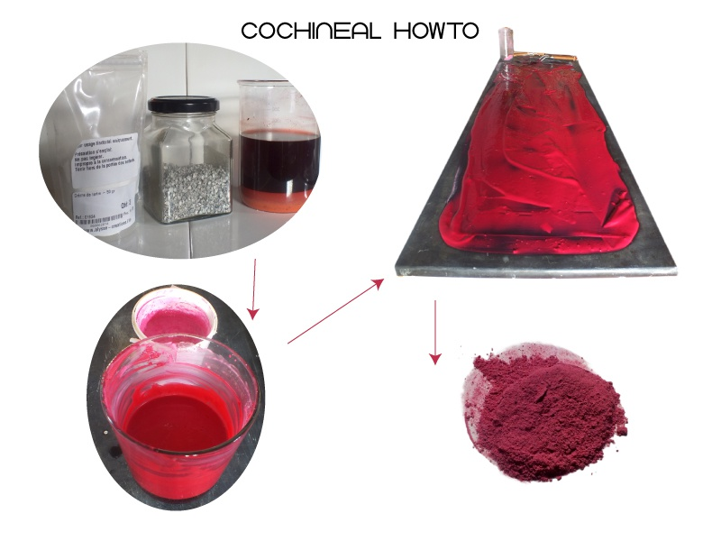 Cochineal Howto chromatic craft form pigment colours colorant
