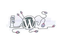 Cleanup WordPress