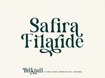 Briktail - Modern Serif Font