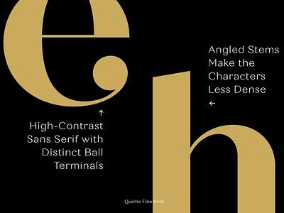 Quiche Font Family high-contrast terminals download font sans serif serif font branding graphic design typefaces lettering font design typography typeface modern font vintage font retro font classic font elegant font font family fonts font