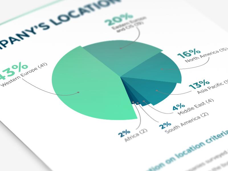 Report scheme pie report diagram