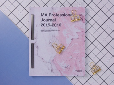 MA Professional Journal 2015-2016 design book