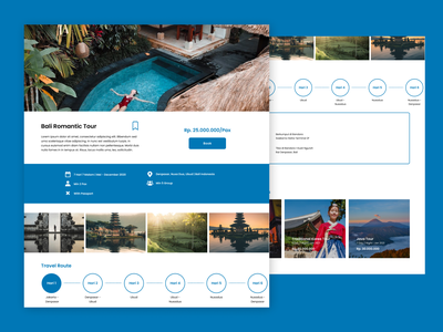 Travel Package Info Page ui design web design user interface templaete blue web ux traveling websites website info holiday tour travel user experience uiux uidesign ui figma design