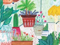 Greenhouse at daytime
