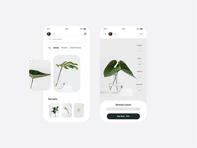 Flowers - eCommerce minimal clean app mobile design mobile figma design ux ui flowers ecommerce