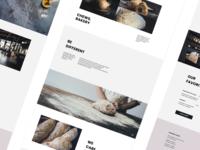 Bakery website ux ui website web figma design vector design