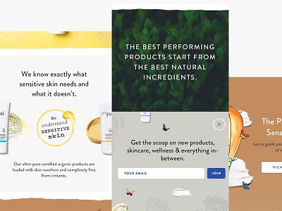 PaiSkincare website redesign cosmetics skin beauty skincare