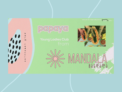 Papaya Brand Identity brand identity vector branding illustration design