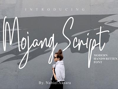 Mojang Script