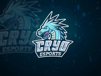 Ice Dragon Esport Team Logo