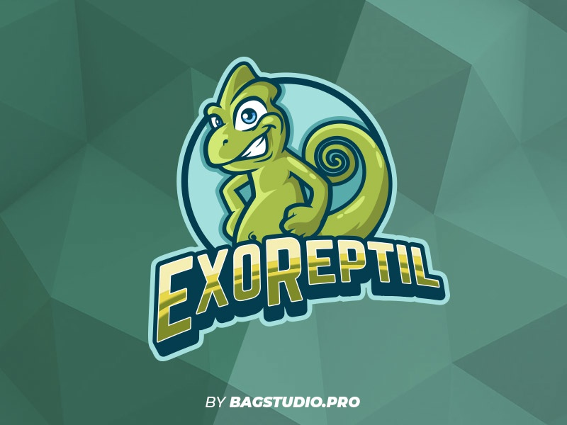 Reptile Logo Mascot character cartoon nature animal logodesign logo green chameleon reptile
