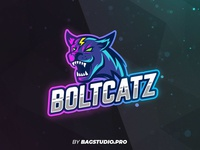 Wildcat Logo Template