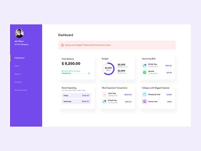 Budgetting Web App budgeting money finance ux ui dashboard