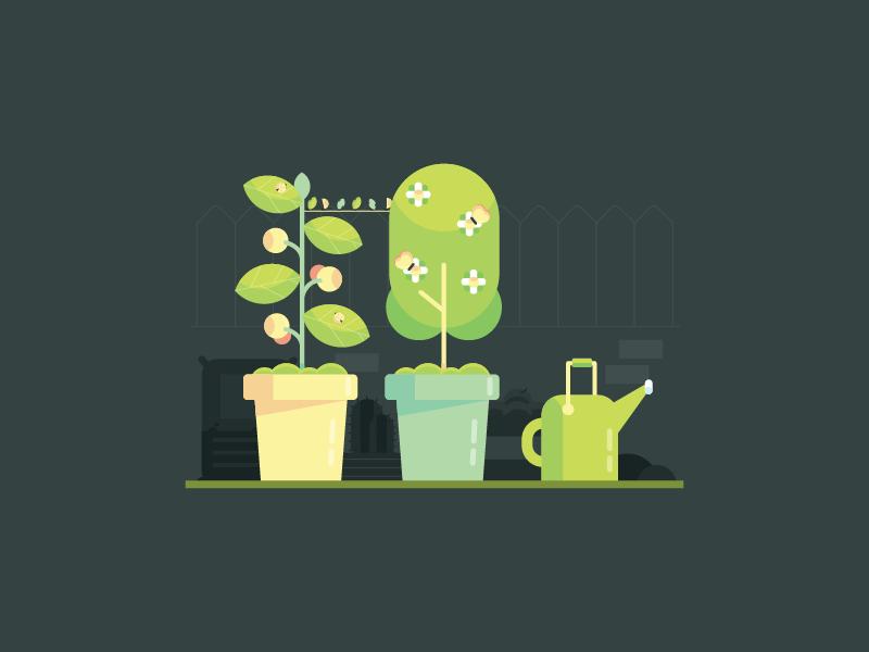 Mini Garden green bug leaves leaf pot plant garden mini