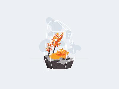Terrarium - 01 illustration illustrator rium pot plant leaf terrarium