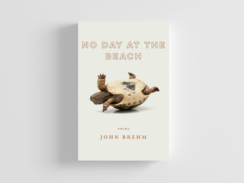 No Day at the Beach book cover
