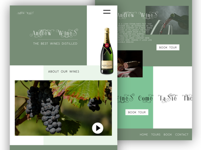 Andrew Wines website design website concept website design ui web design web ux graphic design