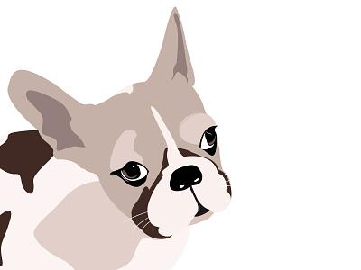 English bulldog animal clean illustrations graphic design drawing photoshop design simple illustrator bulldog illustration dog