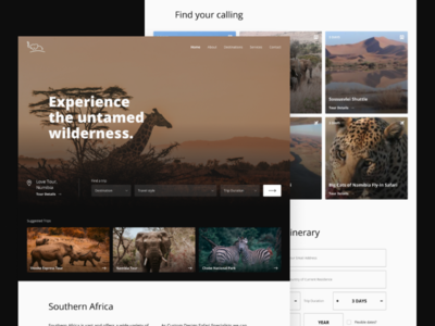 Safari booking website - Web Design