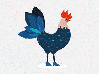Rooster rooster chicken animal illustration