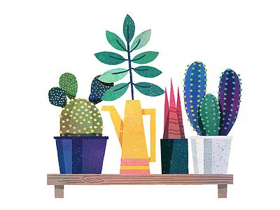 Plant Shelf shelf pots plant cactus
