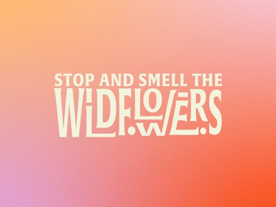 Stop And Smell the Wildflowers gradient wildflowers flowers drawing typography illustration design