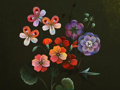 Geraniums geranium botanical surface design vector texture flower floral illustration