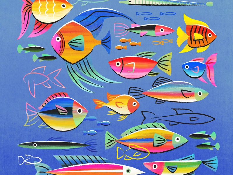Fishy Friends tropical color illustration fish