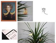 Dylan Rose art direction photography branding design