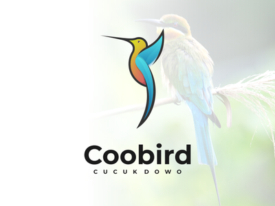coobird lettering logotype logo design logodesign corporate branding vector design logo illustration branding