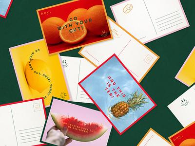 Gut Feeling Kombucha || Postcards postcard branding design