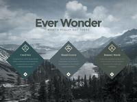 EVER WONDER™ // Web layout 2