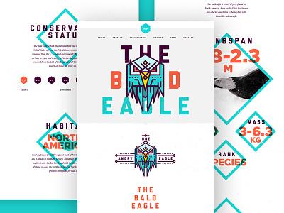 Bald Eagle Landing Page flat ui layout clean website gallery menu icons navigation web design colour animals