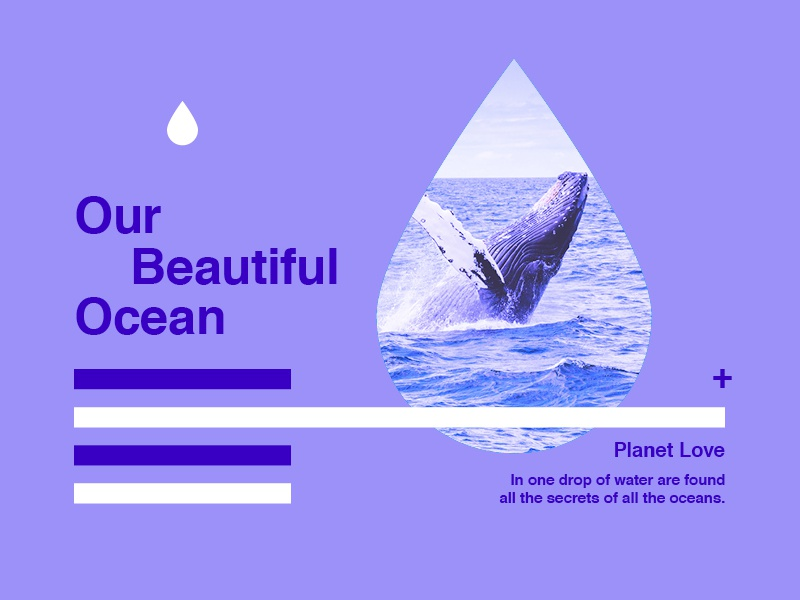 ∆ Planet Love | Our Beautiful Ocean ∆ color sea whale graphics ocean love world type