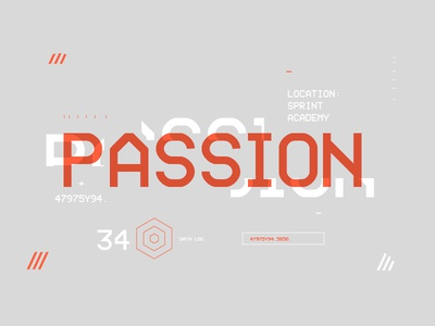 < PASSION > brand branding identity colour color passion ui stats type