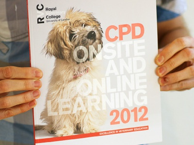 RVC CPD 2012 Brochure - Cover spot uv uncoated typography
